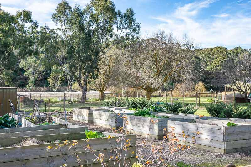 QUIET PICTURESQUE – PARIS CREEK - veggie patch